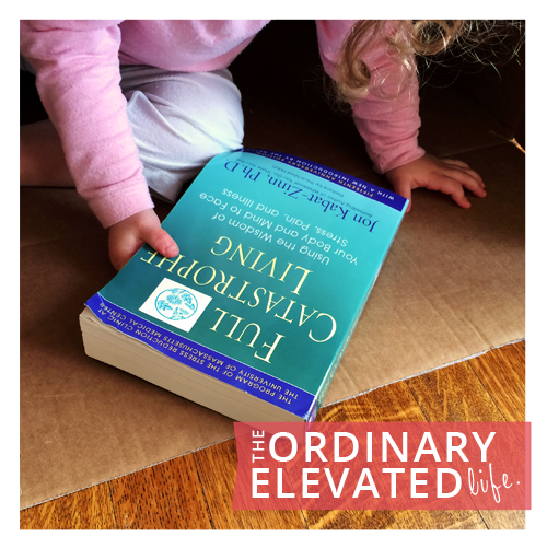 The ordinary elevated equals life.
