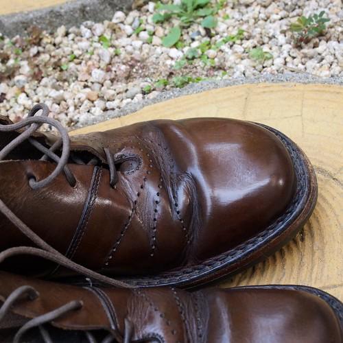 ある営業マンの靴 trippen Wing
