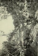 Cauto River