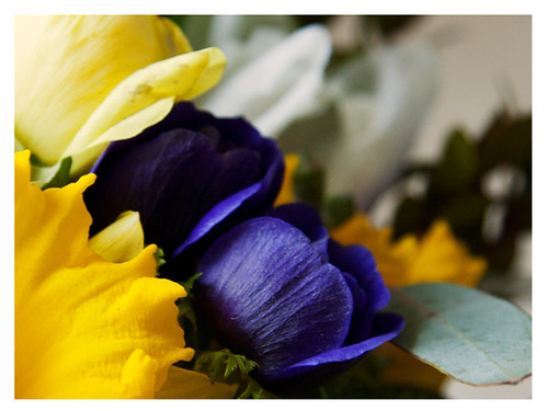 Detail of Spring Bouquet from Farmgirl Flowers: Rose and Daffodil