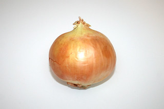 01 - Zutat Zwiebel / Ingredient onion