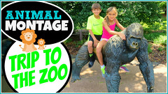 Thumbnail image for Visit to the Toledo Zoo