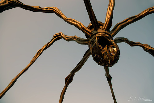 Maman - National Gallery of Canada