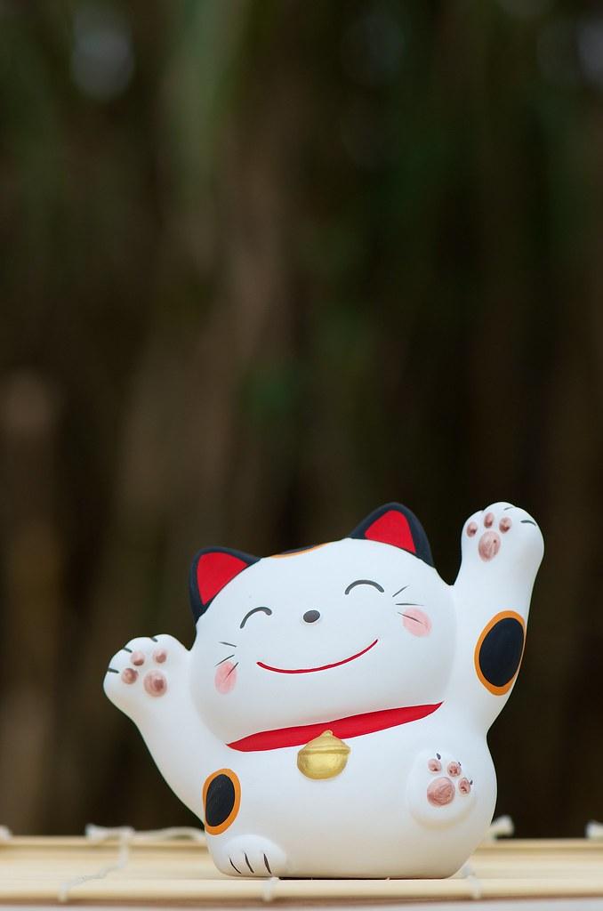 Maneki-neko blanc 6