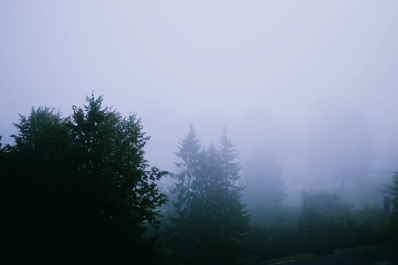 Gloomy autumn morning
