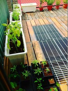 利用複層屋頂隔熱,但不忘採用鍍鋅格柵採光。圖片來源:鍾明靜