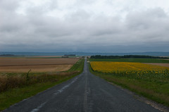 Petite route de campagne (D36)
