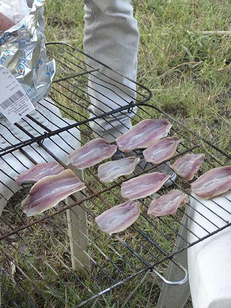 sardines au CRL