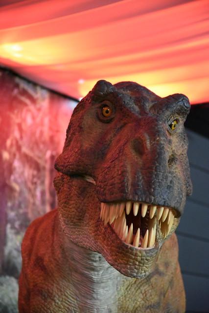 dinosaur D750 02