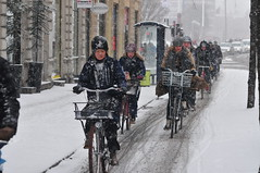 Danish examples at Winter Cycling Congress