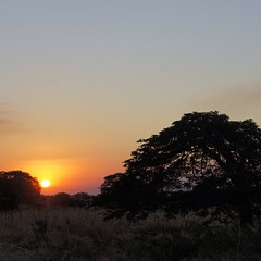 Sunset #zambia #latergram #africa