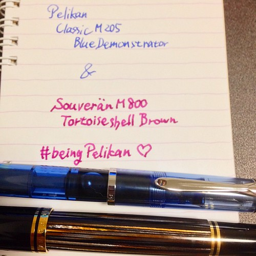 BLUE DEMONSTRATOR is back! #beingpelikan