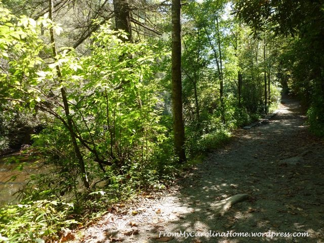 September 20 hike -creek trail