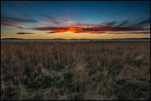 grass gräs sea hav havet moln clouds sunset solnedgång sky himmel vass reed reeds islands öar vatten water longexposure nd32 nd400 3min