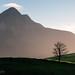 Simple Sunrise Scene by Panorama Paul