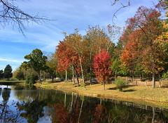 Pond at Sugarloaf