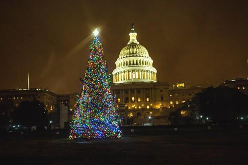 Kenworth - 2016 Capitol Christmas Tree Lit 2