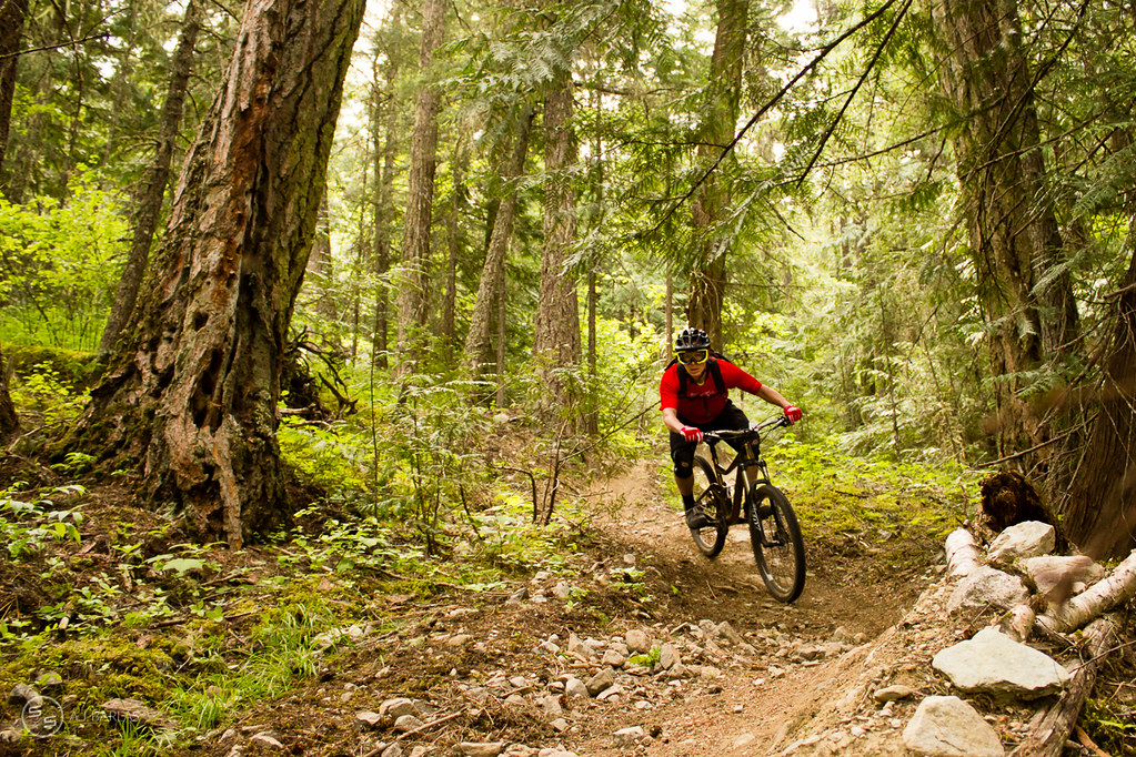 Brad Martyn looking way ahead on stage one of the Pemberton Enduro
