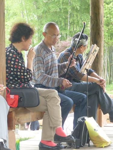 Jiangxi-Yushan (102)