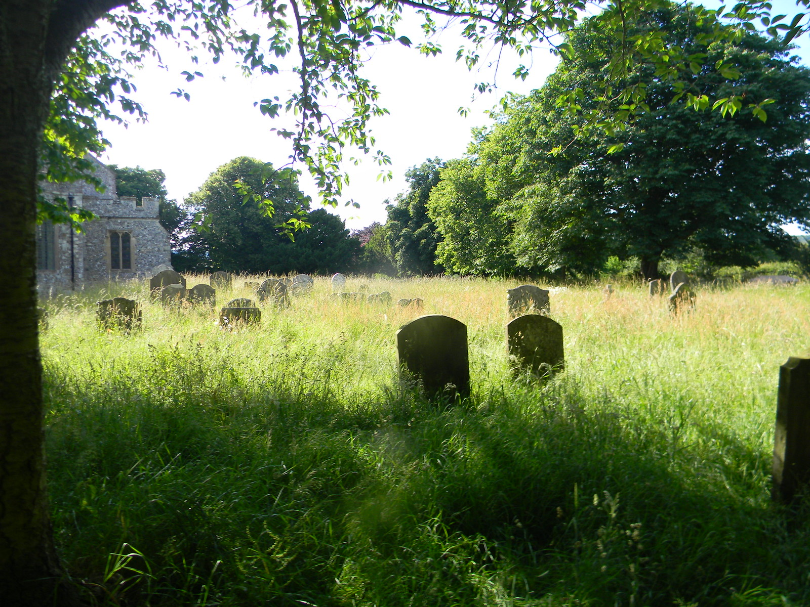 Churchyard, Wye Sandling to Wye