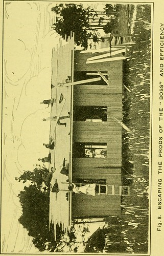Image from page 67 of