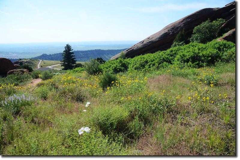 Red Rocks Trail 8