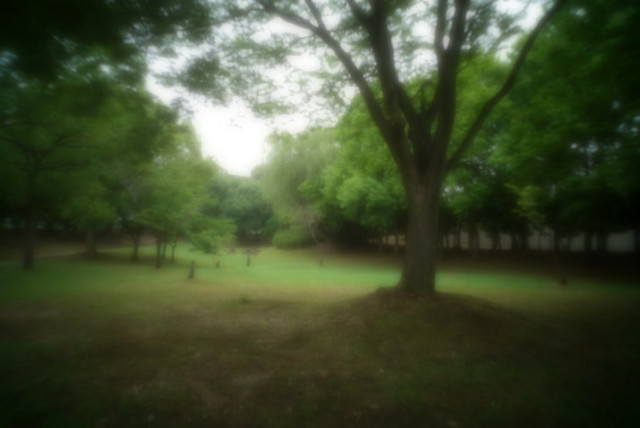 Pinhole Photo by A7s
