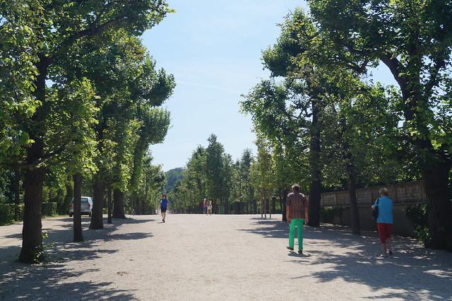 Schonbrunn Walk