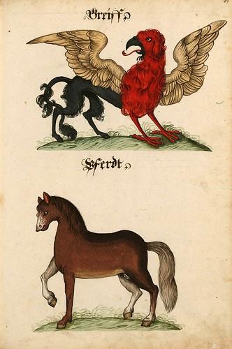 009-Aquarelle von Säugetieren…- e-manuscripta-Bibliothèque électronique suisse