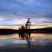 CANOEING IN CHARLESTON LAKE PROVINCIAL PARK AND  IN IVY LEA PARK, SEPTEMBER, 2013 by Jack1962