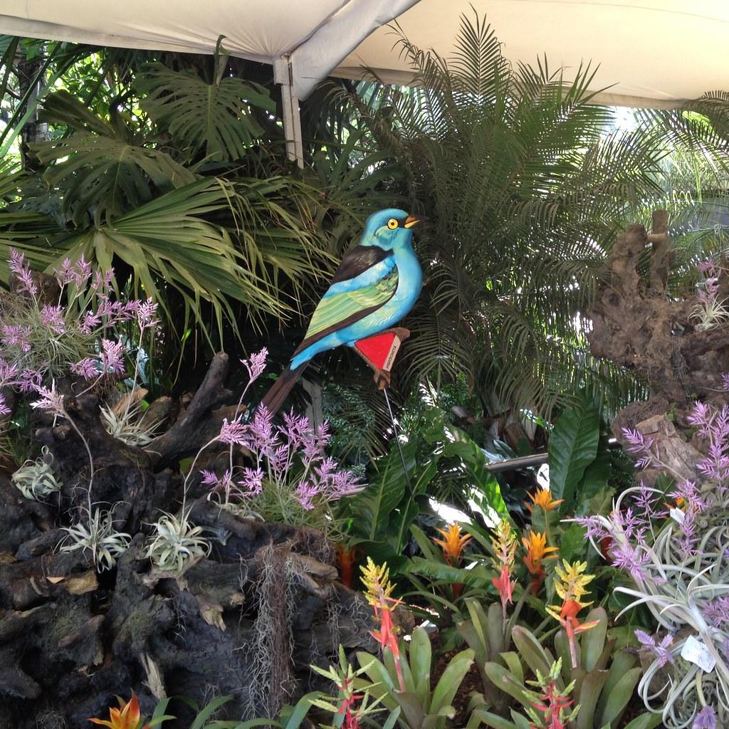 En el jardín botánico-Medellín-Feria de las Flores | Flickr