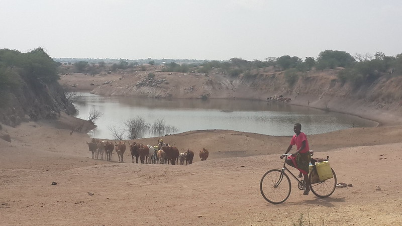 Water hole in the dry season
