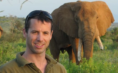 New research led by Colorado State University has revealed that an estimated 100,000 elephants in Africa were killed for their ivory between 2010 and 2012. The study shows these losses are driving population declines of the world's wild African elephants on the order of 2 percent to 3 percent a year.