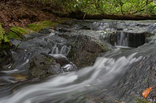 water creek nc stream northcarolina nationalforest nantahala wnc nantahalanationalforest skitterycreek