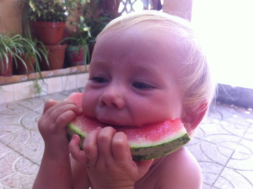 Watermelon Eater