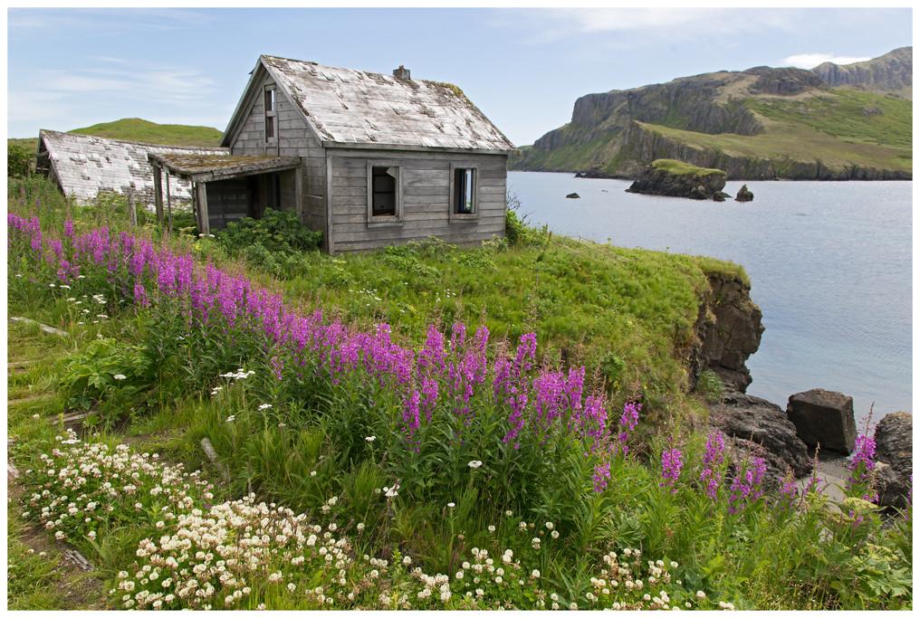Unga Island, het eiland behoort tot de Alaska Peninsula. Hier een verlaten en vervallen visserij dorpje.