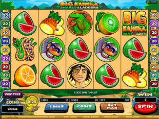 Big Kahuna - Snakes and Ladders Slot Machine