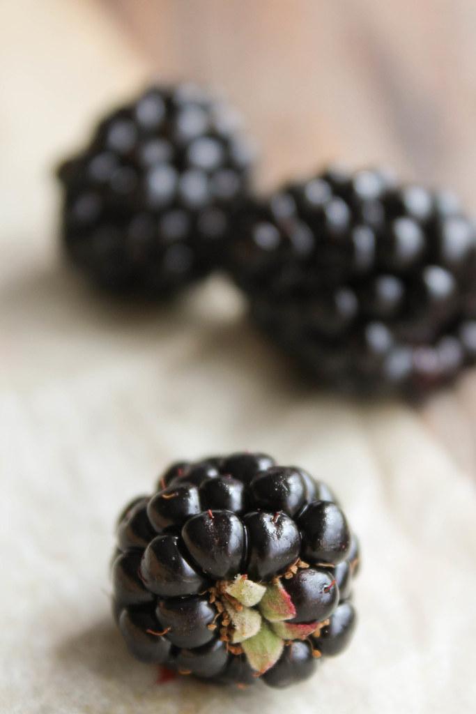 tarte rustique aux prunes