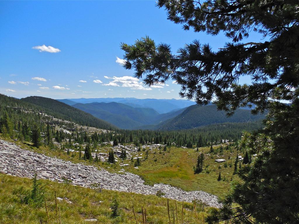 Baree Creek Basin