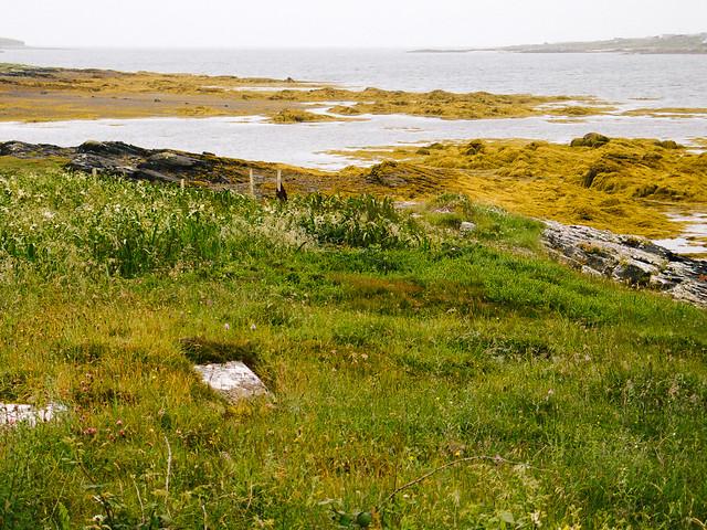 Península de Connemara