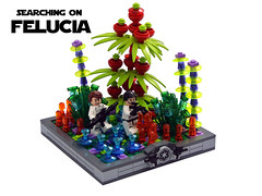 Searching on Felucia