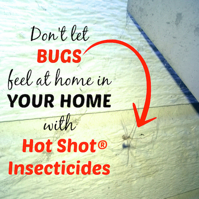 Don't let bugs feel at home with Hot Shot® Insecticides