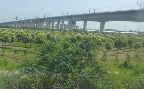 Zhejiang-Suzhou-Hangzhou-train (2)