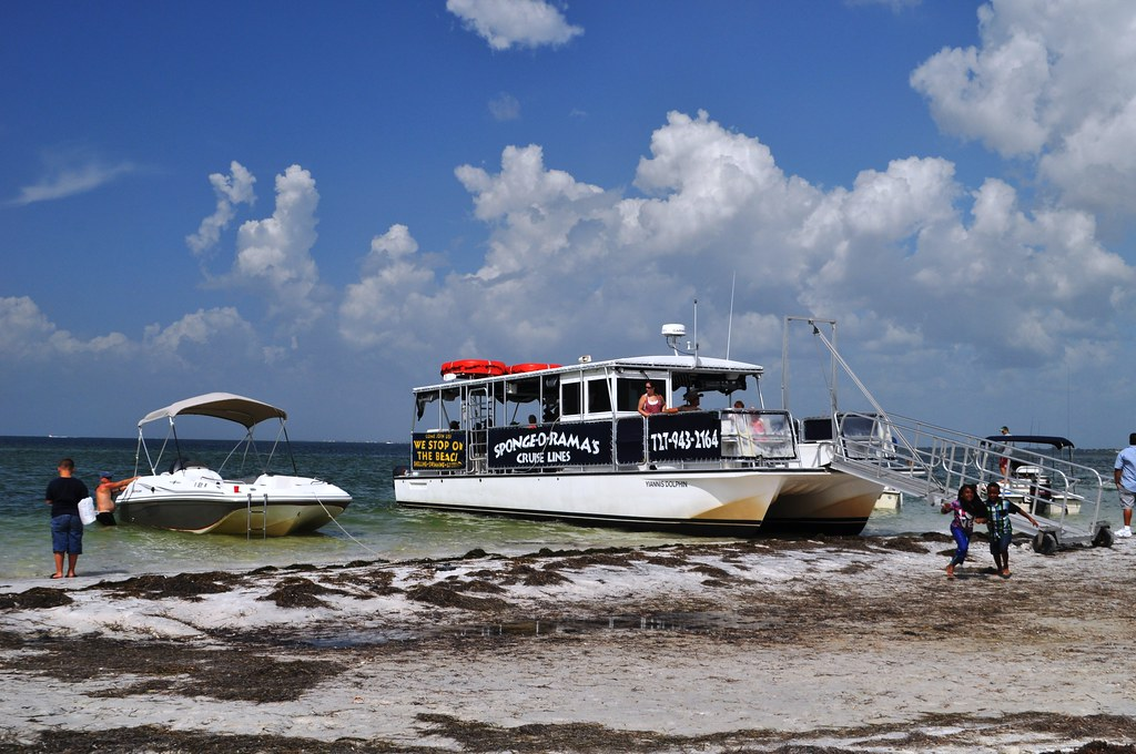Beach Time with Spongeorama's Cruise Lines, Tarpon Springs, Fla., Aug. 30, 2104