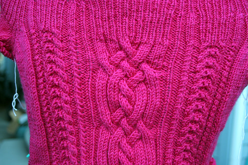 raspberry tart cable close up 9-20