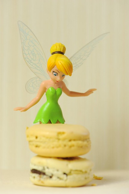 Tinkerbell and macaroon