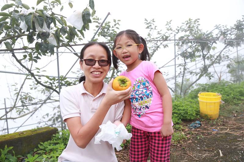 寶妹採的第一顆甜柿