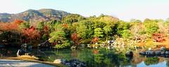 Tenryu-ji, Sogenchi Teien (Garden) -6 (November 2016)