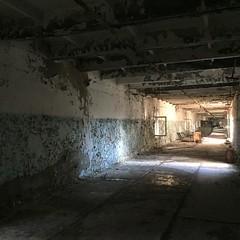 Chernobyl #nofilter
