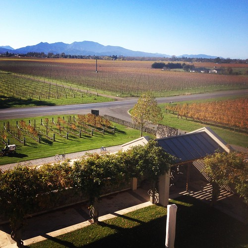 The Wither Hills Winery, Blenheim, Marlborough, New Zealand ♥